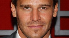 David Boreanaz Wallpaper Download