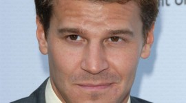 David Boreanaz Wallpaper Free