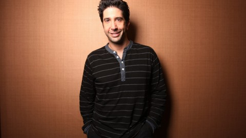 David Schwimmer wallpapers high quality