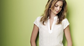 Emily VanCamp High Quality Wallpaper