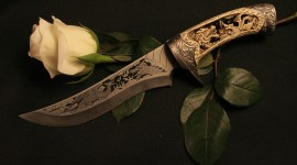 Knife And Flower Wallpaper
