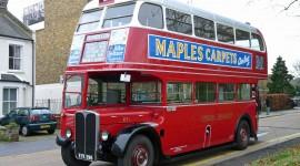 London Buses Wallpaper