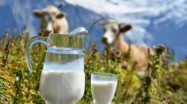 4K Milk Best Wallpaper