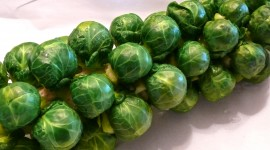 Brussels Sprouts Desktop Wallpaper