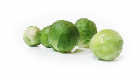 Brussels Sprouts Photo#2