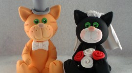 Cat Wedding Wallpaper
