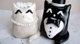 Cat Wedding Wallpaper Gallery