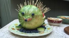 Fruit Hedgehog Wallpaper Full HD