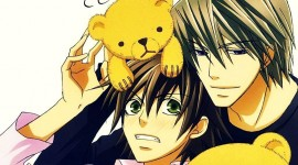 Junjou Romantica Picture Download