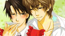 Sekaiichi Hatsukoi Image Download