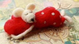Sleeping Mouse Wallpaper Full HD