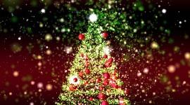 4K Christmas Tree Best Wallpaper