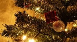 4K Christmas Tree Photo Free