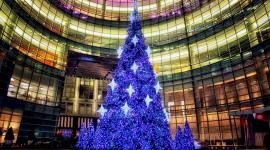 4K Christmas Tree Photo Free#1