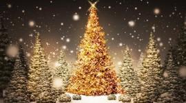 4K Christmas Tree Wallpaper Background