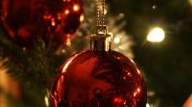4K Christmas Tree Wallpaper For Mobile