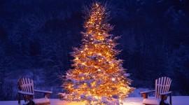 4K Christmas Tree Wallpaper For PC