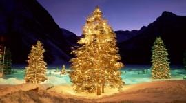 4K Christmas Tree Wallpaper Full HD
