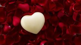 4K Heart Of Roses Wallpaper For PC