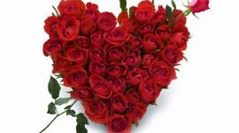 4K Heart Of Roses Wallpaper Free