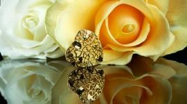 4K Heart Of Roses Wallpaper Gallery