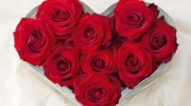 4K Heart Of Roses Wallpaper HQ