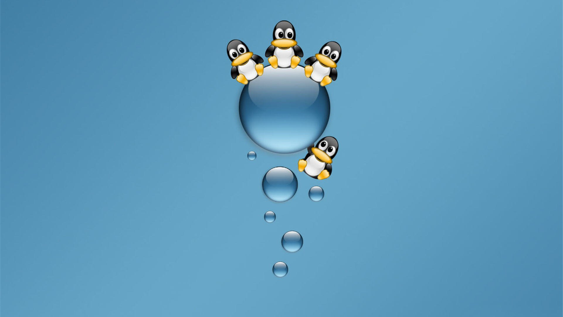 4k penguins wallpapers high quality | download free