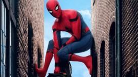 4K Spiderman Desktop Wallpaper HD