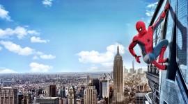 4K Spiderman Wallpaper Download