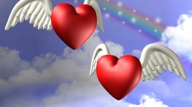 Angels And Hearts Aircraft Picture