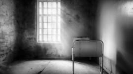 Asylum Photo Free