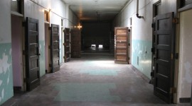 Asylum Wallpaper Gallery