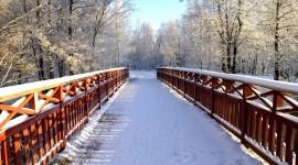 Bridges In Winter Photo