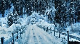 Bridges In Winter Photo Download