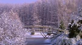Bridges In Winter Photo Free