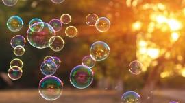 Bubbles Photo Free