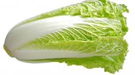 Cabbage Wallpaper Full HD