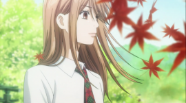 Chihayafuru Desktop Wallpaper