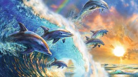 Dance Of The Dolphins Image