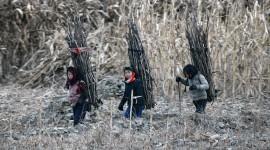North Korea Wallpaper 1080p