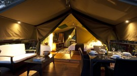 Stay In Tents Desktop Wallpaper