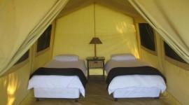 Stay In Tents Desktop Wallpaper For PC