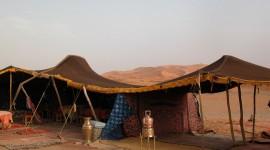 Stay In Tents Wallpaper Gallery