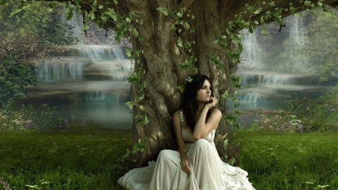 Under A Tree wallpapers high quality