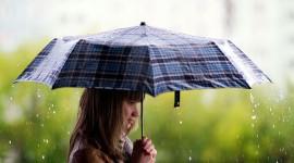 Walking In The Rain Photo