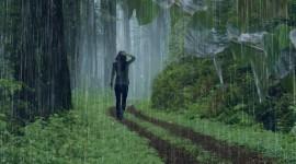 Walking In The Rain Wallpaper Gallery
