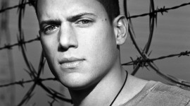 Wentworth Miller Wallpaper HD