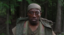 Wesley Snipes Wallpaper HD