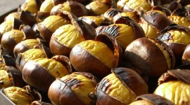 4K Chestnuts Wallpaper Gallery