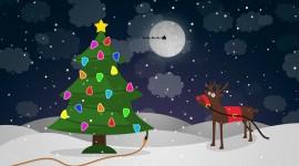 4K Christmas Reindeer Wallpaper Full HD